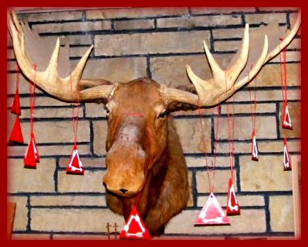 Vigil Moose